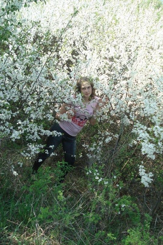 фото цвіте терен
